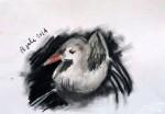 Zwetvogels_hoentje002